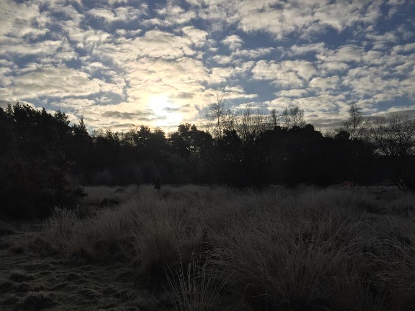 Sky blog pic